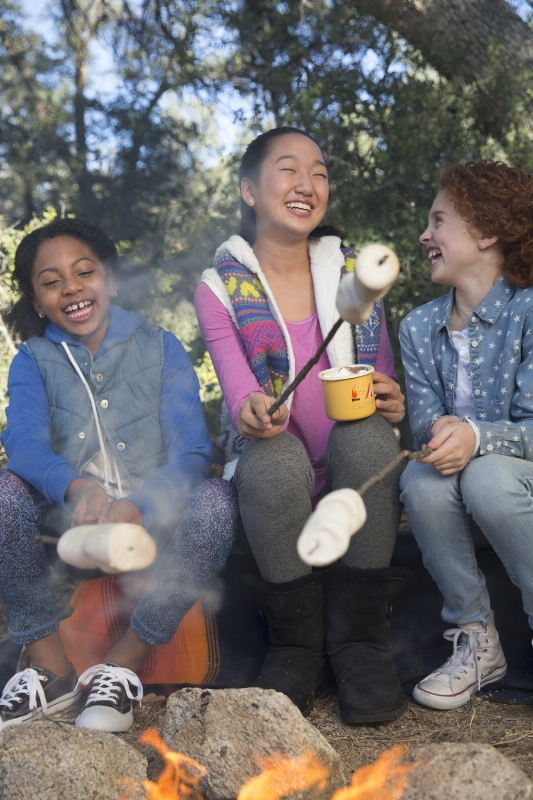 Girl Scouts Announce Two New S'mores Cookies for 2017